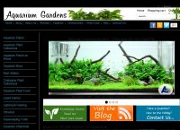 Aquarium Plant Specialist| Buy Live Aquatic Plants Online UK | Tropical Fish Tank Plants